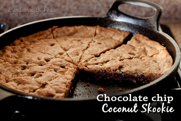 Featured Image for post Chocolate Chip Coconut Skookie