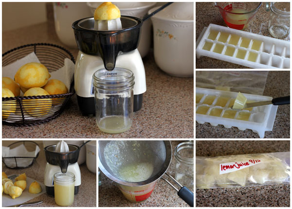 Freezing-Lemon-Juice-Collage-Barbara-Bakes