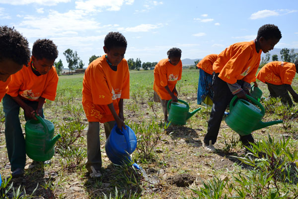 School children watering the fields