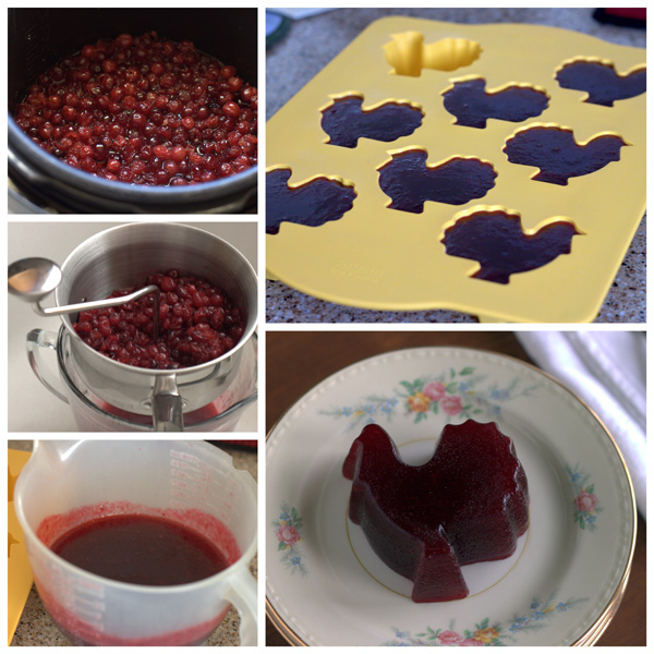 Collage of How to Make Cranberry Jelly BarbaraBakes.com