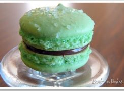 Featured Image for post Green Apple and Caramel Macarons