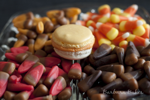 So many different candy corn flavors to try.