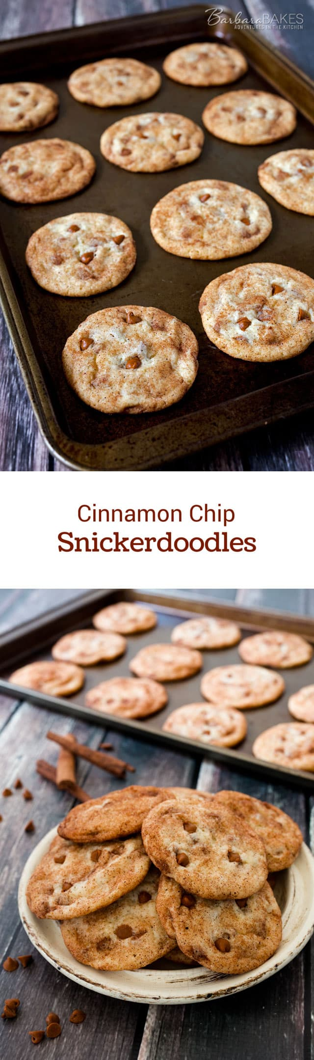 Cinnamon-Chip-Snickerdoodle-Collage-Barbara-Bakes