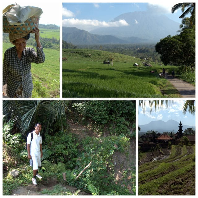 Collage of trekking through the rice paddies in East Bali