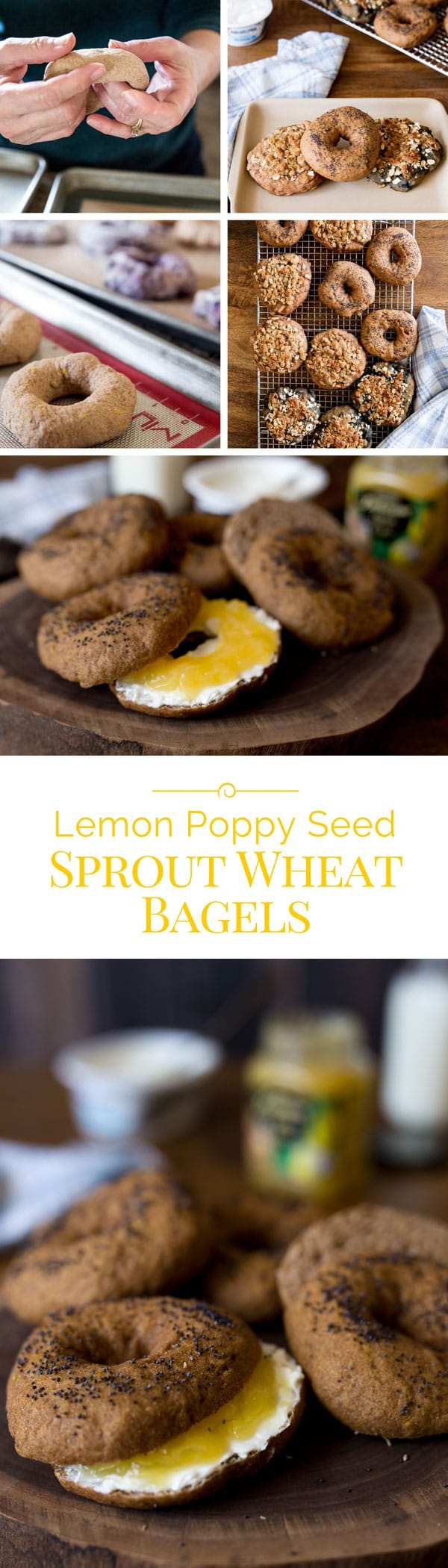 Sprouted-Whole-Wheat-Bagel-Collage-2-Barbara-Bakes