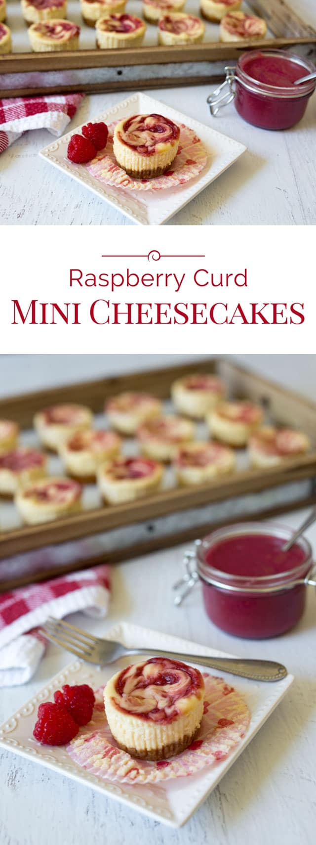 Raspberry-Curd-Mini-Cheesecakes-Collage-Barbara-Bakes