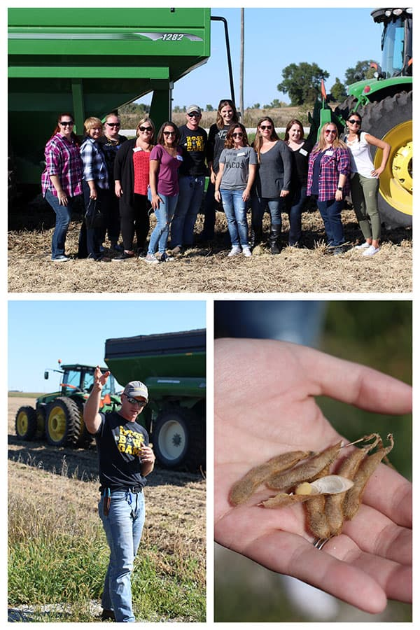 Photo collage of Iowa harvest time.