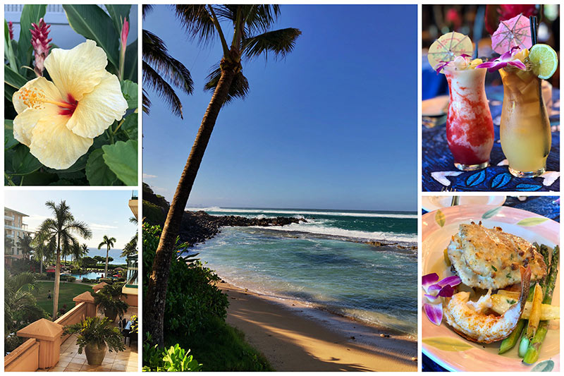 collage of Fun Things To Eat And Do In Maui