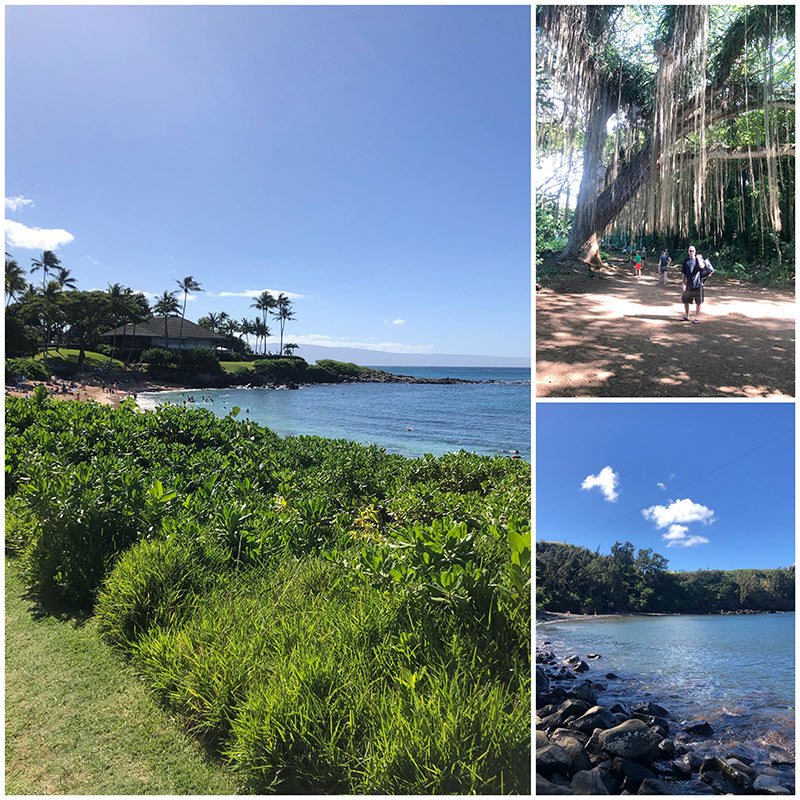 collage from Snorkeling at Kapalua Bay and Honolua Bay