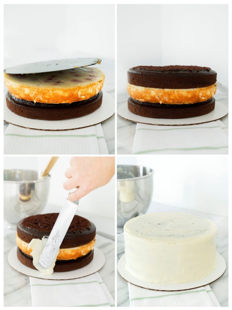 steps to assemble black forest cake with a cheesecake layer