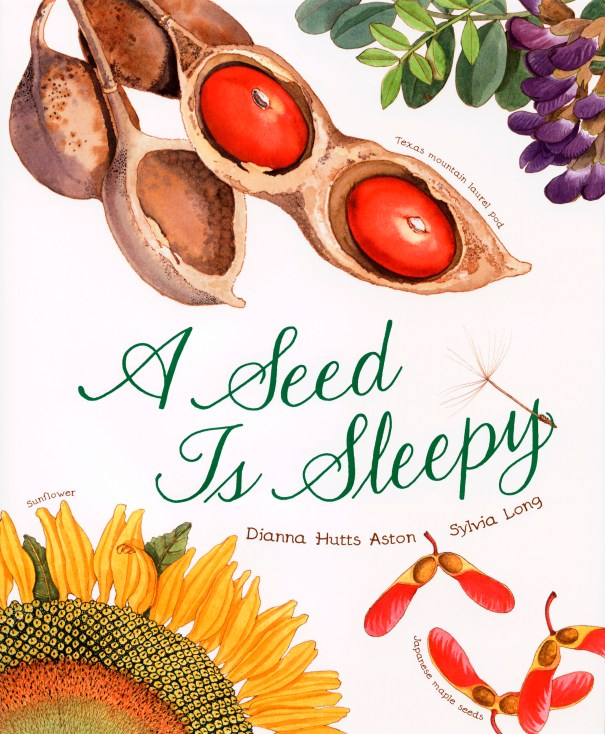 """""""A Seed is Sleepy"""" by Dianna Hutts Aston and Sylvia Long, published by Chronicle Books"""