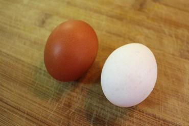 Ovo orgânico e ovo normal