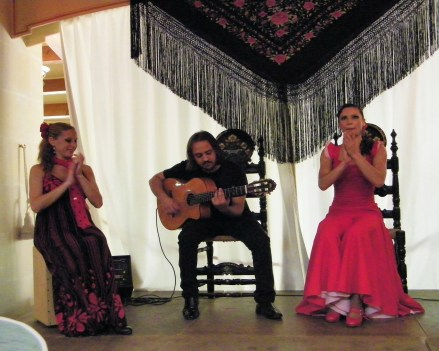 Flamenco Dancer at La Granja