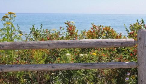 Mariners Trail