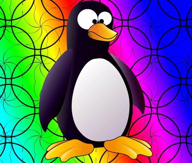 Colorful Penguin Wallpaper