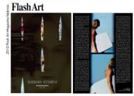 04-flash-art-2010
