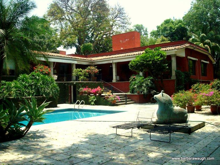 Barbara Waugh Properties La Casa Del árbol