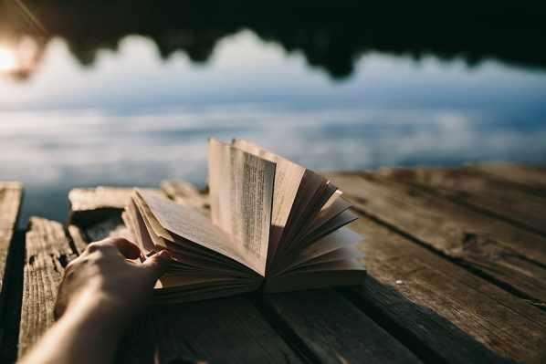 summer-resting-book-relaxing