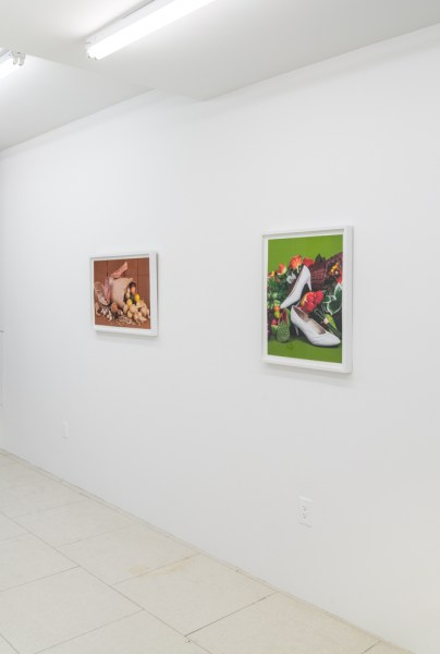 Pronk. Rawson Projects NY, 2015. Installation view.