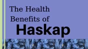 health benefits of montana haskap