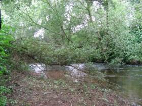 River Teme, Bransford