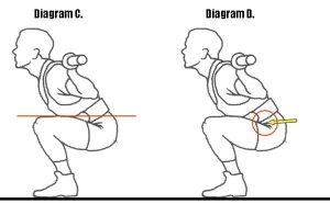 Parallel squat diagram