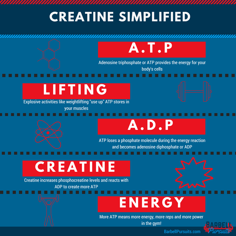 how does creatine work infographic