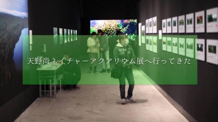 天野尚ネイチャーアクアリウムの世界を見にいってきました!撮影可能!?Gallery AaMo
