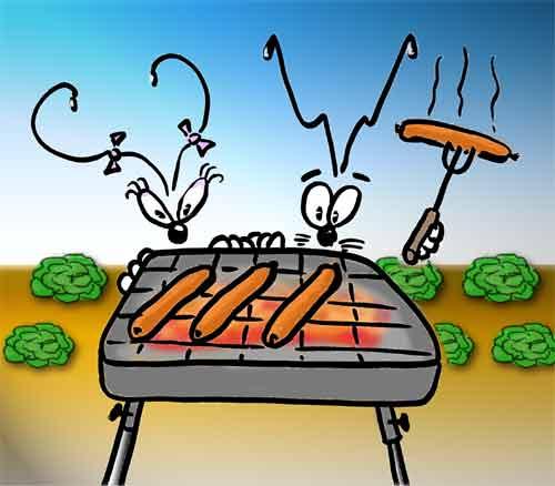 barbecue-umph.jpg