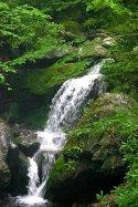 rejoice-grotto-falls