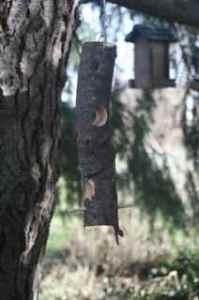 Hanging log bird feeder
