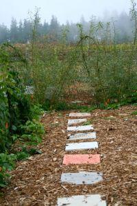 Garden path to?
