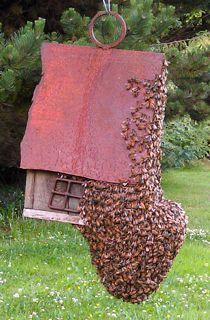 Bee swarm on a birdhouse