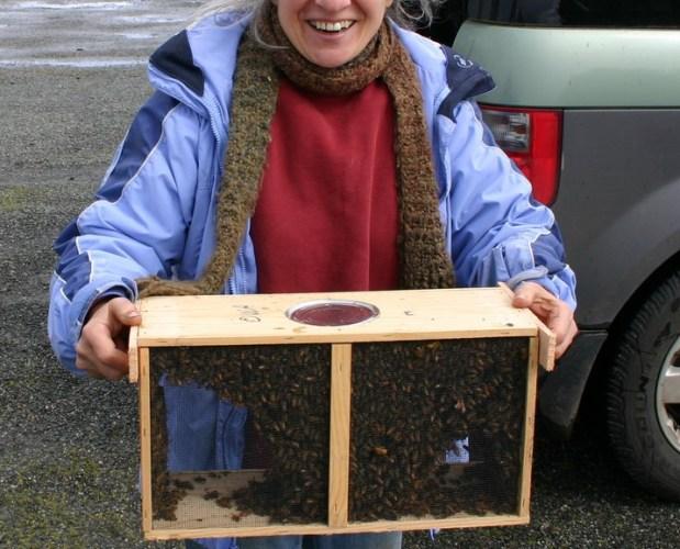 Avoiding Shaken Bee Syndrome
