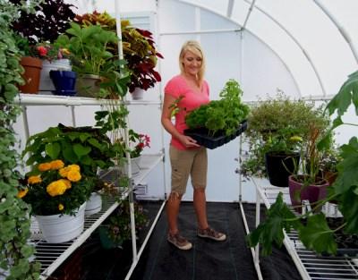 Harvester Solexx Greenhouse - inside