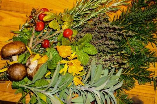 Herbs of November