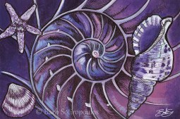 """""""Inside the Nautilus""""6×4 in, Acrylic and ink on Strathmore Mixed Media Paper 2014. All images copyright Barb Sotiropoulos. All Rights Reserved. (Prints Available)"""