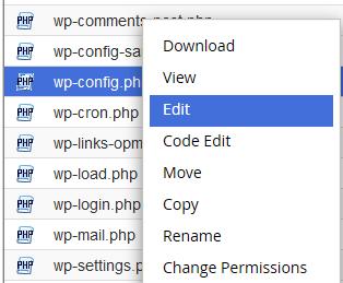 edit wp config