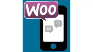 Müşteri ve Yönetici SMS Bilgilendirme Servisi (Yıllık)