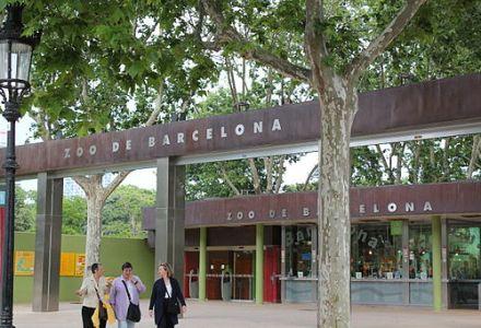 Barcelona Zoo - Bilety i wycieczki online - Barcelona