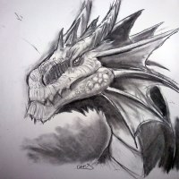 Heart of a Dragon