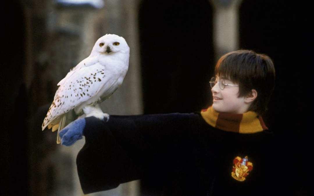 Harry Potter en Concierto en Barcelona