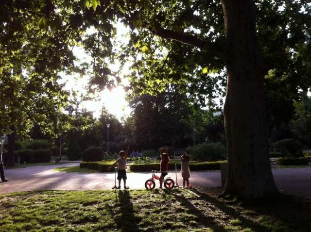 Parque Santa Amelia