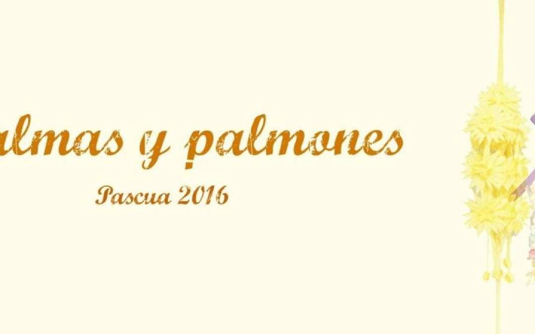 Reserva tu palma o palmón en Floristería Navarro