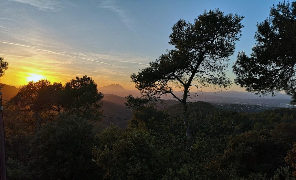 Sunset in Parc Collserola Barcelona