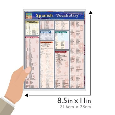 Quick Study QuickStudy Spanish Vocabulary Laminated Study Guide BarCharts Publishing Foreign Language Reference Guide Size