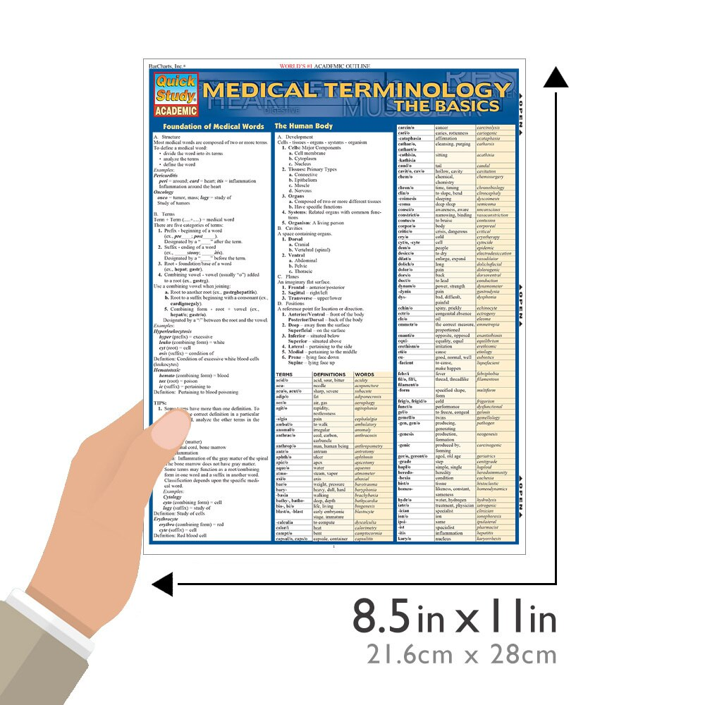 Quick Study QuickStudy Medical Terminology The Basics Laminated Study Guide BarCharts Publishing  Size