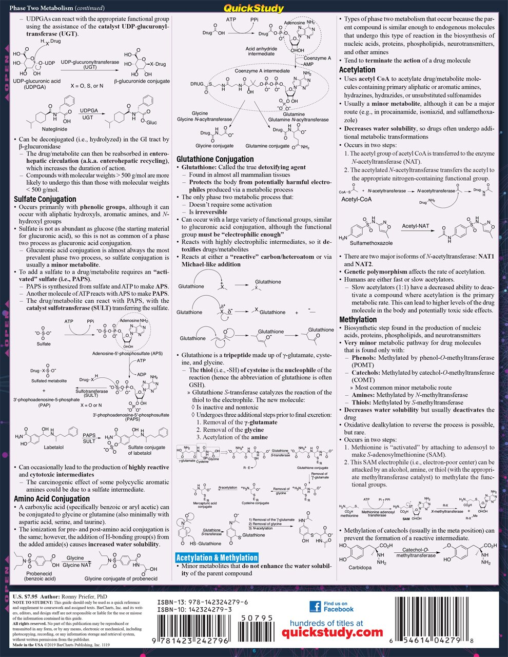 Quick Study QuickStudy Medicinal Chemistry Laminated Study Guide BarCharts Publishing Medical Science Reference Back Image