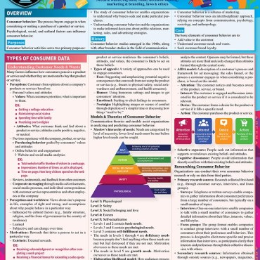 Quick Study QuickStudy Consumer Behavior Laminated Reference Guide BarCharts Publishing Business Marketing Cover Image
