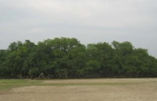 আড়াল করে রেখেছি একটি গ্রামকে